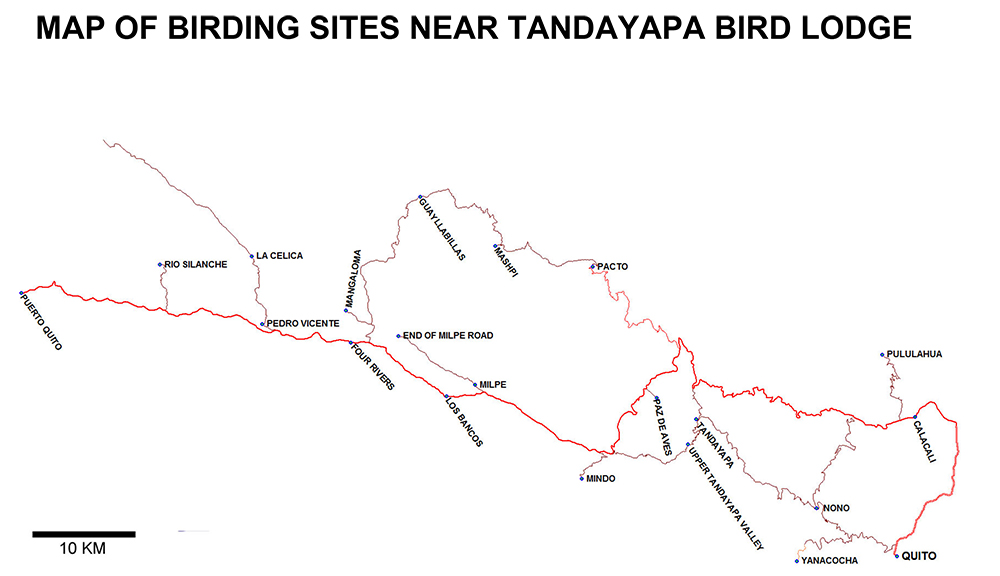 Map of Birding sites near Tandayapa Bird Lodge