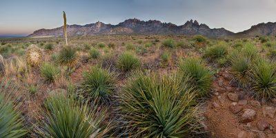 Organ Mountains (Panoramic), New Mexico 1