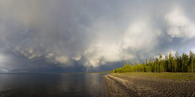 Mammatus Clouds over Yellowstone Lake Panoramic, Yellowstone National Park, Wyoming